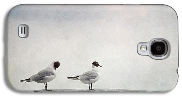 Groom Galaxy S4 Cases - Seagulls Galaxy S4 Case by Priska Wettstein