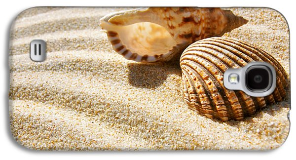 Nature Abstracts Galaxy S4 Cases - Seashell and Conch Galaxy S4 Case by Carlos Caetano
