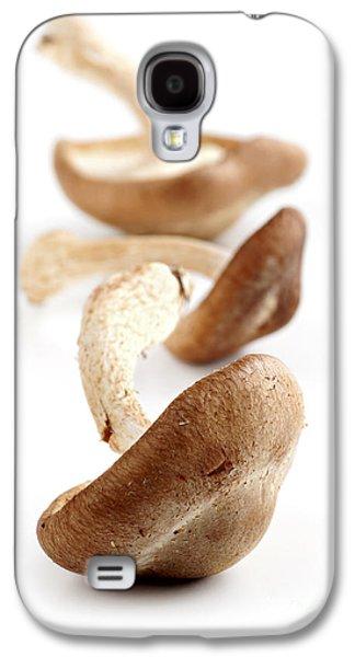 Shiitake Mushrooms Galaxy S4 Case by Elena Elisseeva