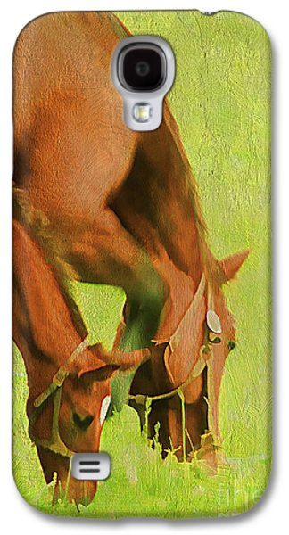 Pastureland Galaxy S4 Cases - Side By Side Galaxy S4 Case by Darren Fisher