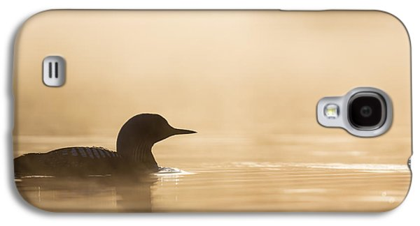 Silhouette In Gold Galaxy S4 Case by Tim Grams