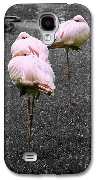 Three Chicks Galaxy S4 Cases - Sleeping Flamingos Galaxy S4 Case by Cheryl Young