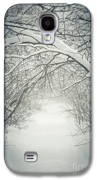 Winter Storm Photographs Galaxy S4 Cases - Snowy winter path in forest Galaxy S4 Case by Elena Elisseeva