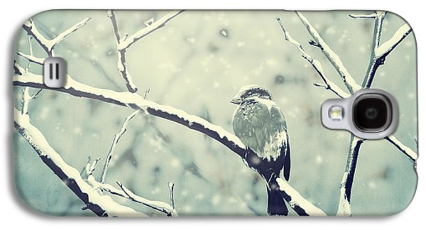 Animal Pyrography Galaxy S4 Cases - Sparrow on the snowy branch Galaxy S4 Case by Jelena Jovanovic