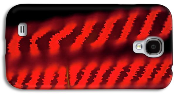 Spirogyra Green Alga Galaxy S4 Case by Gerd Guenther