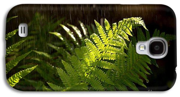 Ferns Galaxy S4 Cases - Summer rain Galaxy S4 Case by Jane Rix