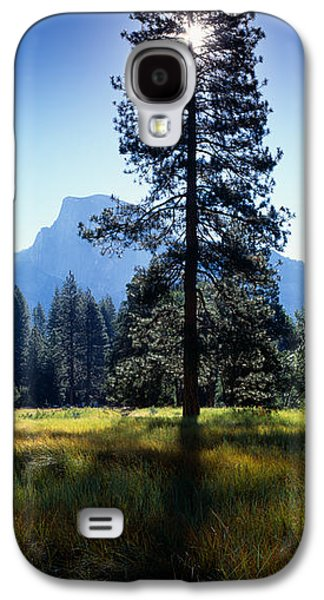 Sun Galaxy S4 Cases - Sun Behind Pine Tree, Half Dome Galaxy S4 Case by Panoramic Images