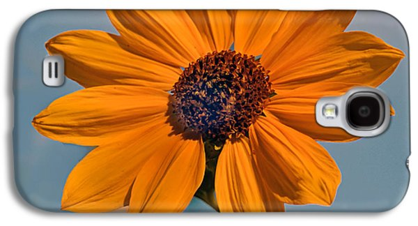 Haybale Galaxy S4 Cases - Sunflower Galaxy S4 Case by Robert Bales