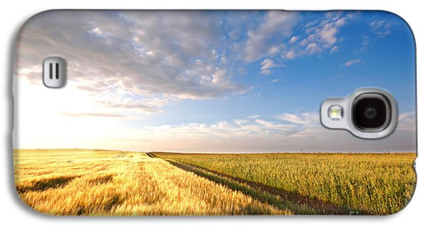 Country Galaxy S4 Cases - Sunset field Galaxy S4 Case by Michal Bednarek