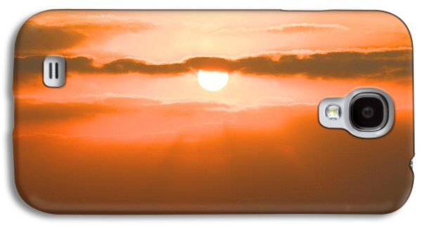 Biology Pyrography Galaxy S4 Cases - Sunset Galaxy S4 Case by Gregor  Gatti