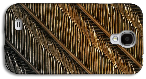 Hirundo Rustica Galaxy S4 Cases - Swallow Feather Detail, Sem Galaxy S4 Case by Power and Syred