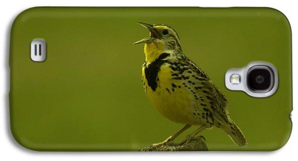 The Meadowlark Sings Galaxy S4 Case by Jeff Swan