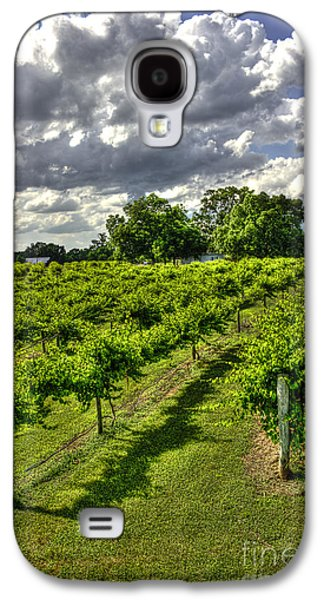 Pastureland Galaxy S4 Cases - The Vineyard  Galaxy S4 Case by Reid Callaway