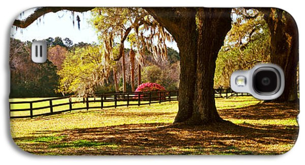 Garden Scene Galaxy S4 Cases - Trees In A Garden, Boone Hall Galaxy S4 Case by Panoramic Images
