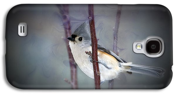 Tufted Titmouse Galaxy S4 Cases - Tufted Titmouse Galaxy S4 Case by Betty LaRue