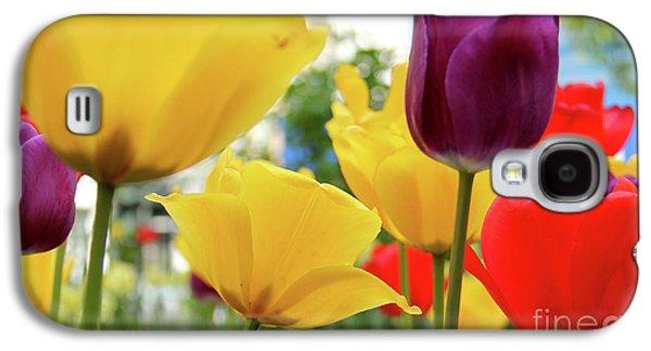 Orsillo Galaxy S4 Cases - Tulips  Galaxy S4 Case by Mark Ashkenazi