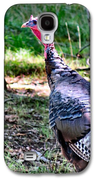 Turkey Lurkey Galaxy S4 Case by Michelle Milano