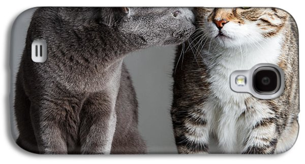 Furry Galaxy S4 Cases - Two Cats Galaxy S4 Case by Nailia Schwarz