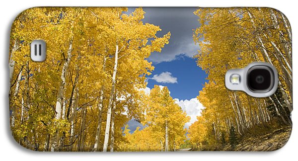 Recently Sold -  - Concept Photographs Galaxy S4 Cases - Usa, Colorado, Near Steamboat Springs Galaxy S4 Case by Ron Dahlquist