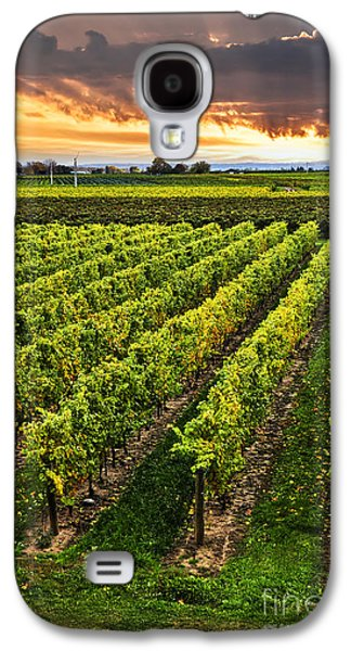 Field Galaxy S4 Cases - Vineyard at sunset Galaxy S4 Case by Elena Elisseeva