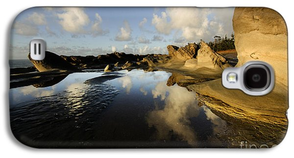 Surreal Landscape Galaxy S4 Cases - Visions Of Nature 6 Galaxy S4 Case by Bob Christopher