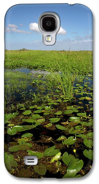 Water Lilies And Sawgrass Galaxy S4 Case by David R. Frazier