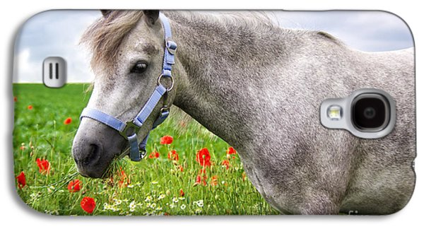 Horse Images Galaxy S4 Cases - Welsh Pony Galaxy S4 Case by Angela Doelling AD DESIGN Photo and PhotoArt