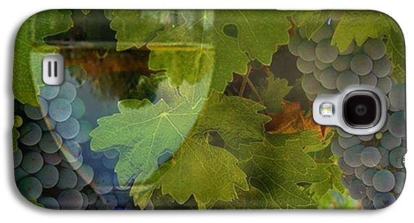 California Vineyard Galaxy S4 Cases - Wine Galaxy S4 Case by Stephanie Laird