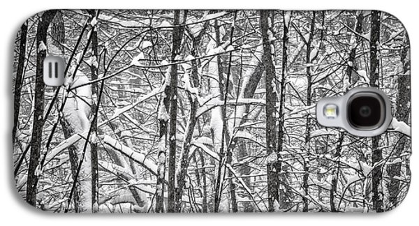 Abstract Nature Galaxy S4 Cases - Winter forest abstract Galaxy S4 Case by Elena Elisseeva