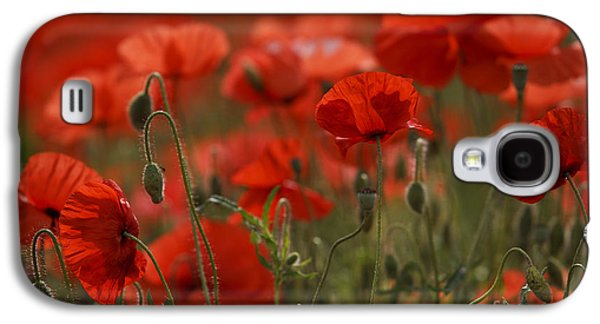 Crowd Galaxy S4 Cases - Red Poppy Flowers Galaxy S4 Case by Nailia Schwarz