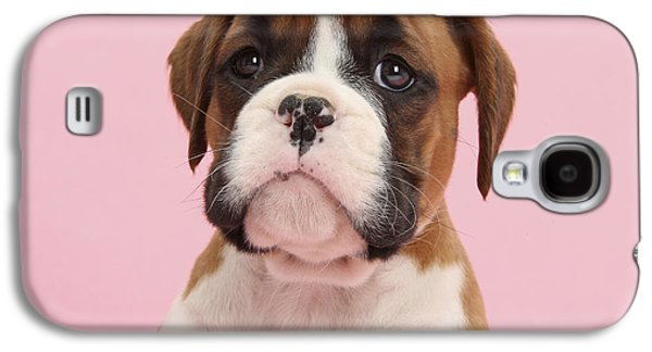 Boxer Puppy Galaxy S4 Cases - Boxer Puppy Galaxy S4 Case by Mark Taylor
