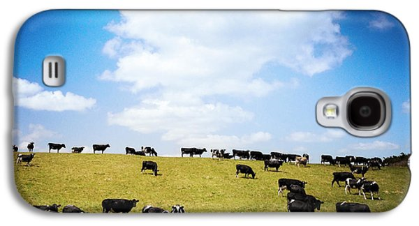 Agricultural Galaxy S4 Cases - Cows Galaxy S4 Case by Les Cunliffe