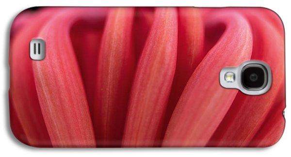 Anne Geddes Galaxy S4 Cases - Untitled Galaxy S4 Case by Anne Geddes