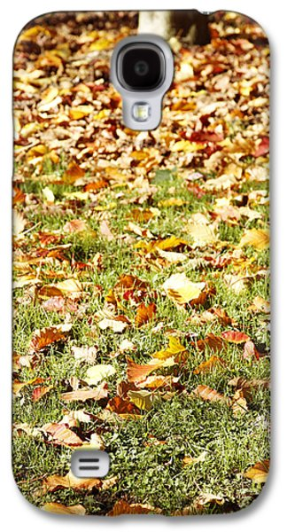 Fall Grass Galaxy S4 Cases - Autumn Galaxy S4 Case by Les Cunliffe