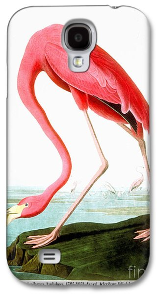 Wild Life Drawings Galaxy S4 Cases - American Flamingo Galaxy S4 Case by John James Audubon