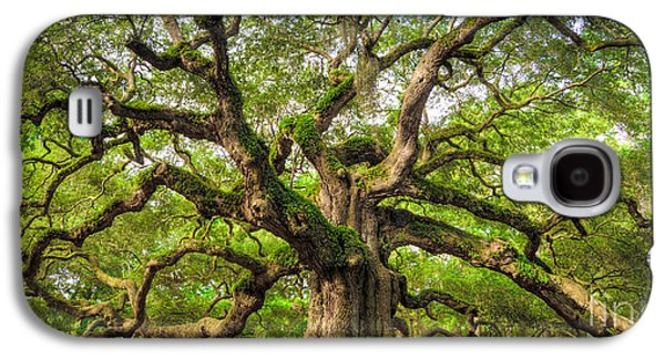 Carolina Galaxy S4 Cases - Angel Oak Tree of Life Galaxy S4 Case by Dustin K Ryan