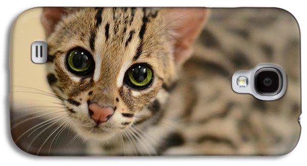 Asian Leopard Cub Galaxy S4 Case by Laura Fasulo