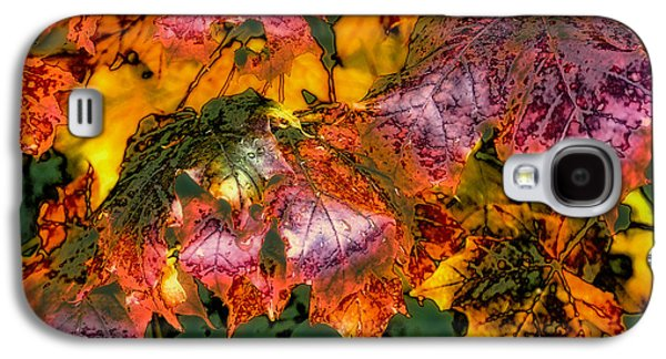 Surreal Landscape Galaxy S4 Cases - Autumn Leaves Galaxy S4 Case by David Patterson