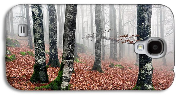 Beech Forest With Fog In Autumn Galaxy S4 Case by Mikel Martinez de Osaba