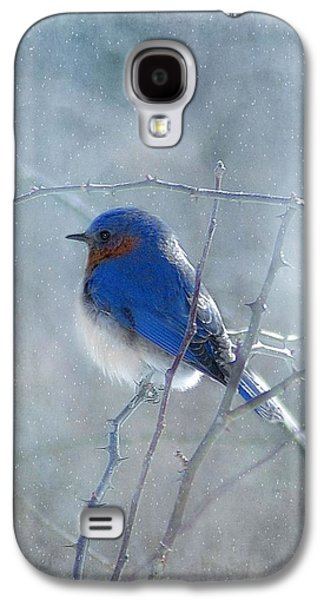 Snow Galaxy S4 Cases - Blue Bird  Galaxy S4 Case by Fran J Scott
