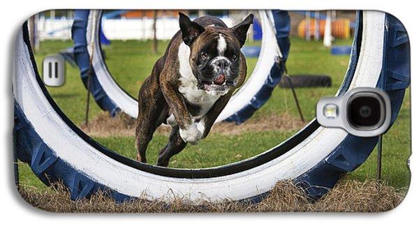 Boxer Galaxy S4 Cases - Boxer Dog Galaxy S4 Case by Johan De Meester