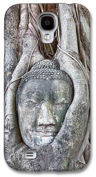 Statue Portrait Galaxy S4 Cases - Buddha Head in Tree Galaxy S4 Case by Fototrav Print
