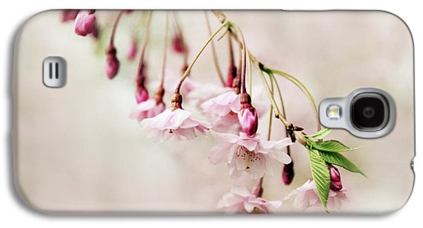 Cherry Blossoms Galaxy S4 Cases - Budding Blossom Galaxy S4 Case by Jessica Jenney
