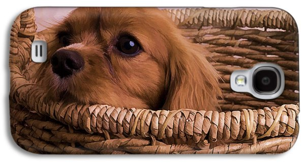 Charles Digital Art Galaxy S4 Cases - Cavalier King Charles Spaniel Puppy in basket Galaxy S4 Case by Edward Fielding