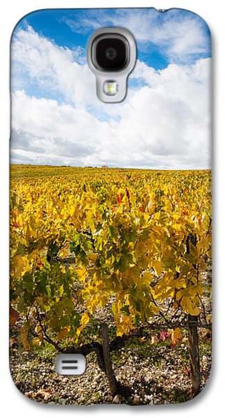 Haut Galaxy S4 Cases - Chateau Lafite Rothschild Vineyards Galaxy S4 Case by Panoramic Images