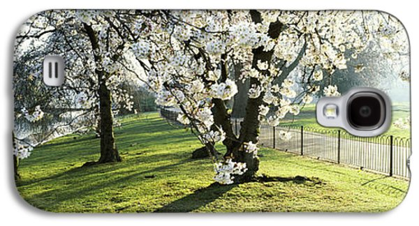 Cherry Blossoms Galaxy S4 Cases - Cherry Blossom In St. Jamess Park, City Galaxy S4 Case by Panoramic Images