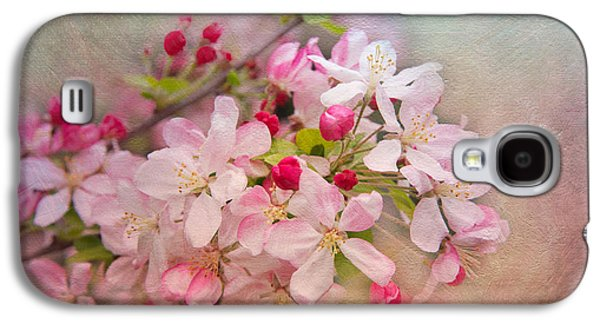 Botanical Galaxy S4 Cases - Cherry Blossoms Galaxy S4 Case by Lynn Bauer