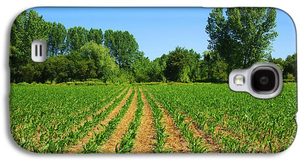 Agronomy Galaxy S4 Cases - Cultivated Land Galaxy S4 Case by Carlos Caetano