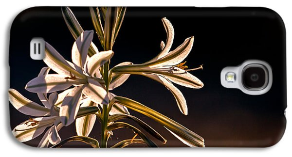 Haybale Galaxy S4 Cases - Desert Easter Lily Galaxy S4 Case by Robert Bales