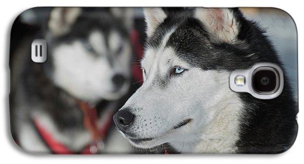 Dog Sled Races Are A Popular Winter Galaxy S4 Case by Richard Wright